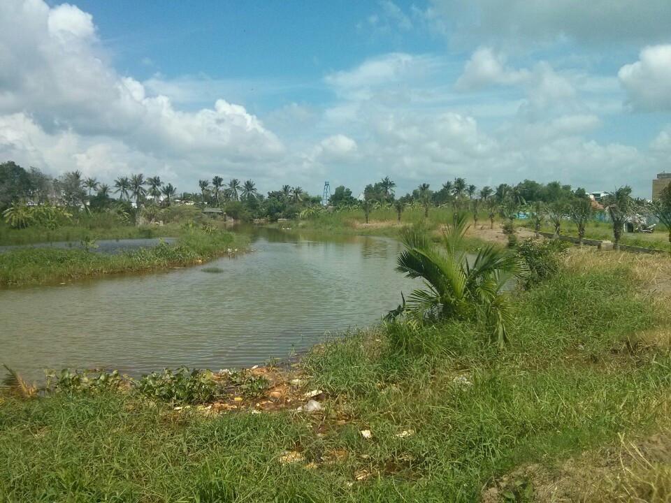 Hết tỉnh táo nổi với buổi mua đất dự án qua môi giới
